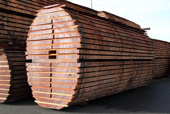 plot-bois-pornic-tronc-arbre-coupe-44